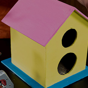 Bird House DIY using Miles